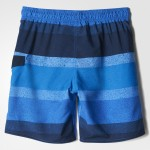 GRAPHIC WATER SHORTS